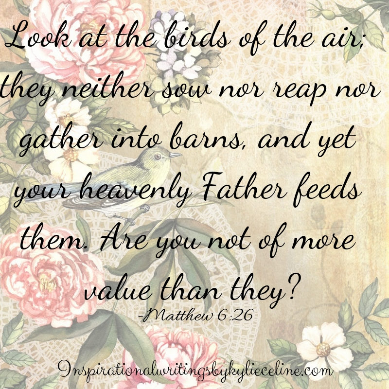 look at the birds of the air_ they neither sow nor wrap nor gather into barns, and yet your heavenly father feeds them. are you not of more value than they?-3